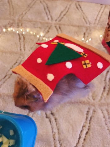 hamster ugly christmas sweater