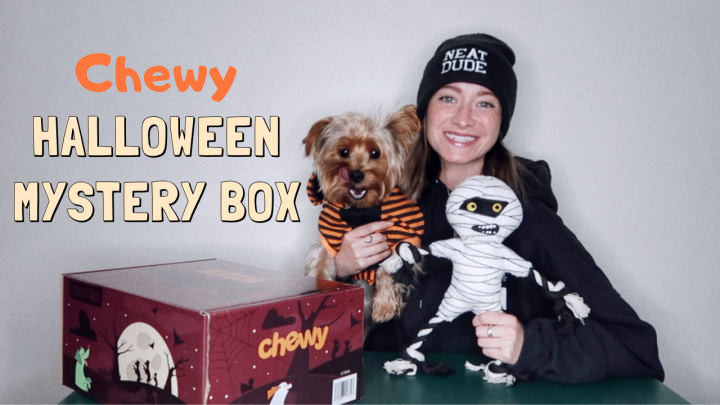 chewy halloween goody box